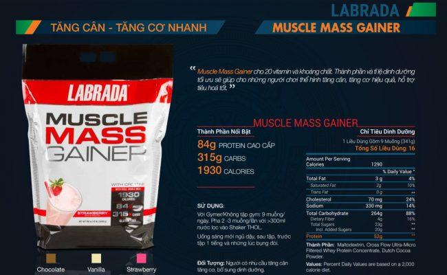 mass gainer tăng cân